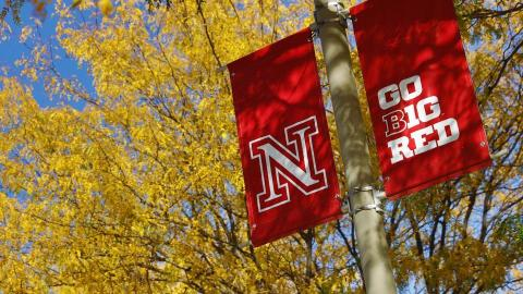 Photo of red banners on campus light pole