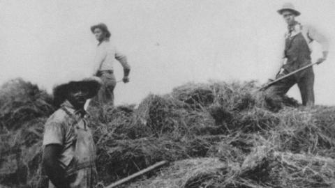 The Hannah family harvests hay in Cherry County, Nebraska. (Courtesy photo | Great Plains Black History Museum)
